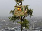 Most Precariously Placed Treehouses Earth