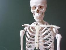 Skeletons Closet: Dealing With Your Lover's Ex(s)