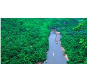 Making iPad Forever Green Kerala, India