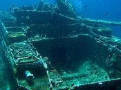 Seven Amazing Coral Reefs Made From Sunken Vehicles