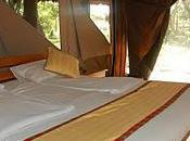 Kenya Adventure: Tents, Camps Lodges