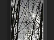Framed Black White Nature Photo Dreaming Spring