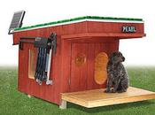 Doghouse With Solar Heating System, Lights Wi-Fi Security Camera