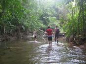 Project Focus: Costa Rica