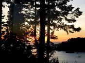 Humboldt County: Redwoods, Seashore, California History