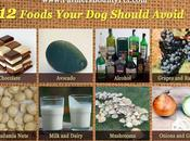 Foods Your Should Avoid
