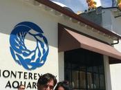 Visiting Monterey Aquarium