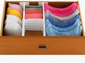 Housie Wowsie Ways Organize Your Skivvies
