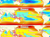 Ocean Acidification: Complete Loss Tropical Coral Reefs 2050 2100