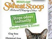 Review: Shweat Scoop Clumping Litter