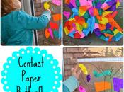 Contact Paper Butterfly