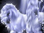 Unicorns Love (part
