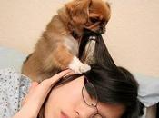 Pets Whose Early-To-Rise Habit Troublesome Cute