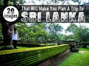 Images That Will Make Plan Trip Lanka