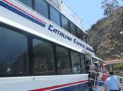 Celebrate Your Birthday Catalina Island!