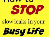 Stop Slow Leaks Your Busy Life (And Have Darn Good Time Because It!)