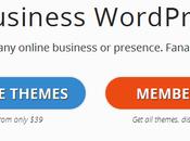 Best Stylish Premium Wordpress Themes Business