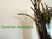 Asparagus Caught Sardinia