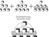 Undergrad International Business Chapter Organizational Structure