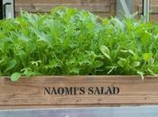 Suttons' Seed Mixes (and Personalised Crates!)