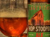 Beer Review Lagunitas Stoopid