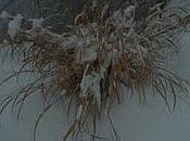 First Snow Storm 2012!!!!!