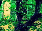 Rainy Hang