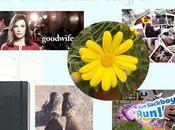 April 2015 Life Favourites