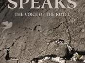 Book Review: Stone Speaks, Israel Rubin