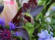 Flowers Custard