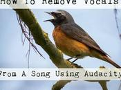 Remove Vocals From Song/MP3 Using Audacity