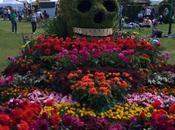 Tatton Park: Celebrations Round