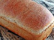 Ricotta Olive Bread