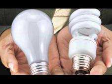 Natural Light ALWAYS Bright Idea!