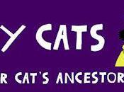 History Cats