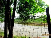 Where Raghavendra Chose Reside!