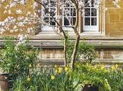 Book Review Oxford College Gardens Richardson, Photographs Andrew Lawson