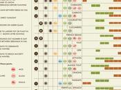 Vegetable Growing Cheat Sheet
