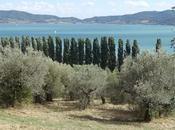 September UMBRIA, ITALY, Part Lake Trasimeno Isola Polvese