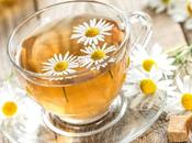 Great Health Benefits Chamomile