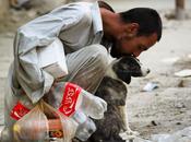 Human Love Nazir Ekhlass