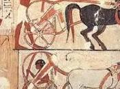 Ancient Egyptian Transport