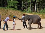 What Terengganu: Kenyir Lake's Elephants Water Park