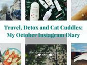 October Instagram Diary: Travel, Detox Cuddles