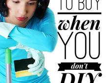 Green Products Don't DIY: Home Edition