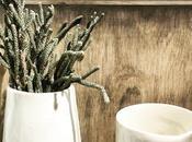 Sunday Bouquet: Succulent Taylor Ceramics Remodelista Market This Weekend