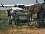 Caravan Flying Vanderburg