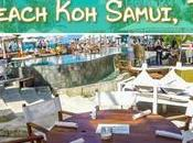Amazing Sunday Brunch Nikki Beach Samui