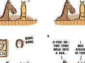 Horse Laugh Start 2016