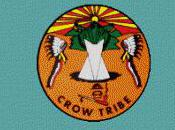 Building Energy Efficient Homes Crow Reservation